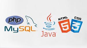 WordPress Coding languages- MySQL, javascript, php, css, html