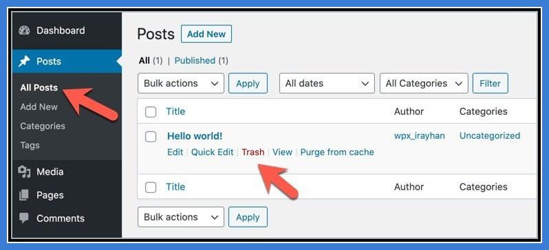 2 Trash Hello World Post WordPress